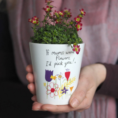 Flower Pot Vase Gift For Mums Or Grannys / With Seeds