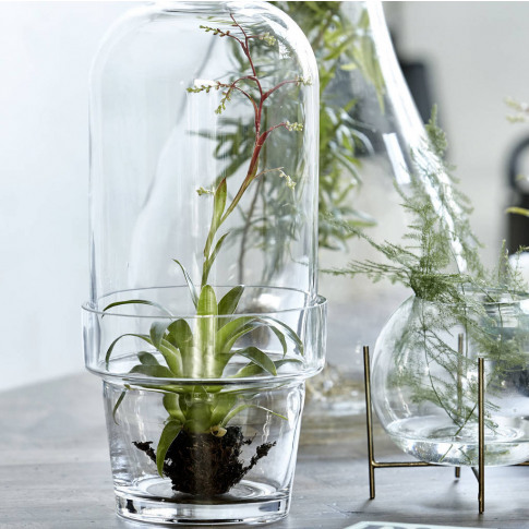 Glass Bell Jar Planter