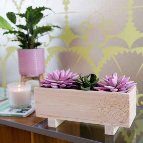Personalised Engraved Wooden Planter With Succulents