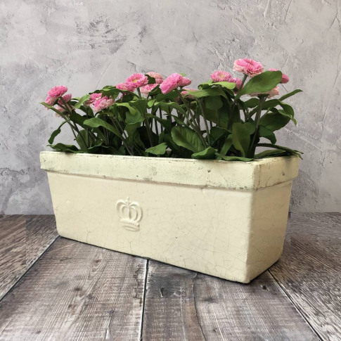Cream Aged Ceramic Planter