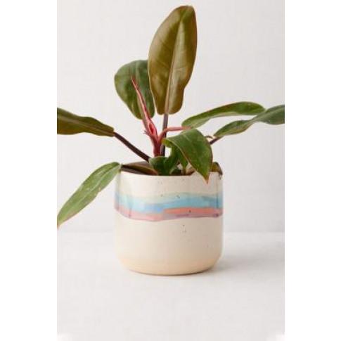 Soft Stripe Ceramic Planter - Assorted All At Urban ...