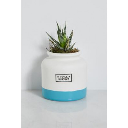 I Will Survive Planter - Blue All At Urban Outfitters