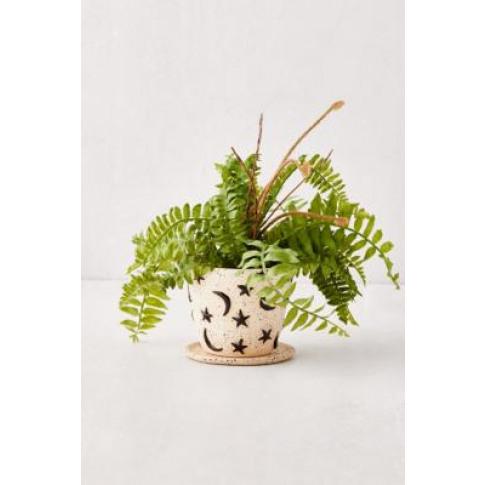 Estrella Small Plant Pot And Tray - Black All At Urb...