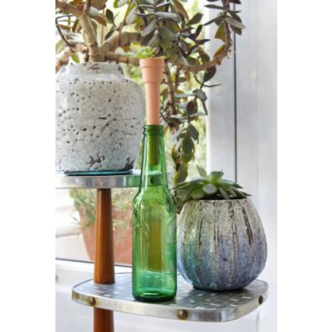 Make Your Own Bottle Top Herb Planter - Assorted All...