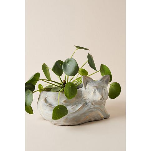 Fox Plant Pot - Grey, Size S