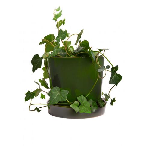 Terracotta Flower Pot 18 cm - Green