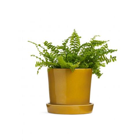 Terracotta Flower Pot 18 Cm - Yellow