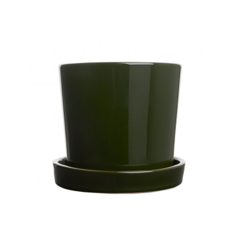 Terracotta Flower Pot, Medium - Green