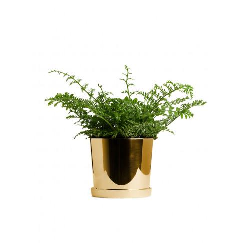 Brass Flower Pot 12 cm - Gold