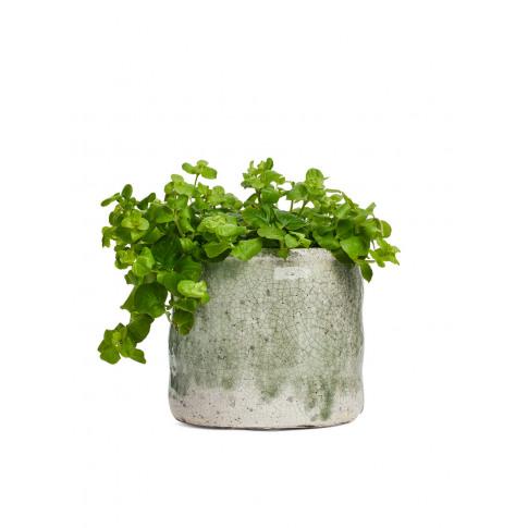 Serax Flower Pot 13 Cm - Green