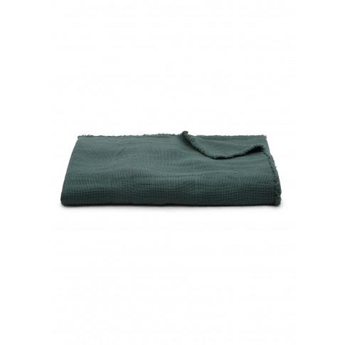 Fin Blanket - Bottle