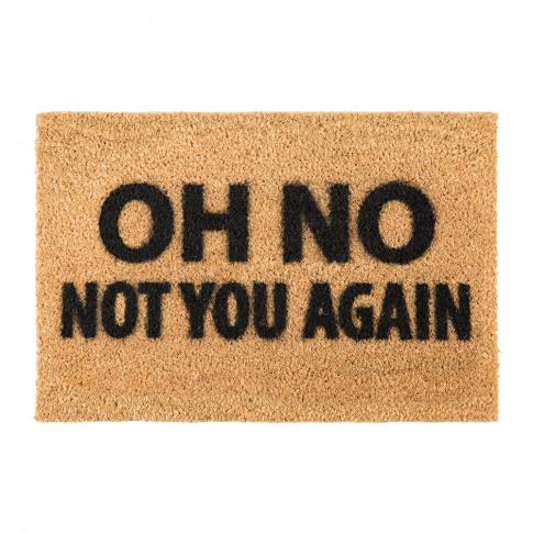 Artsy Doormats - Not You Again Door Mat