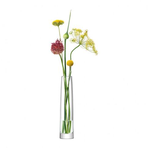 Lsa International - Stems Vase - Clear - 30cm