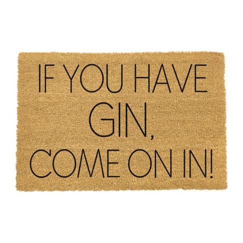 Artsy Doormats - If You Have Gin Come On In Door Mat