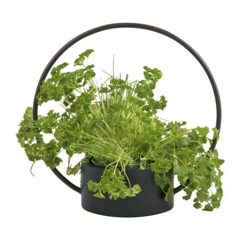 Xlboom - O-Collection Planter - Black - Medium