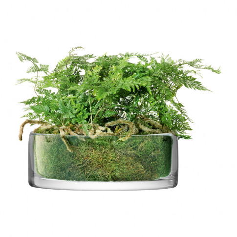 Lsa International - Stems Bowl/Planter - Clear
