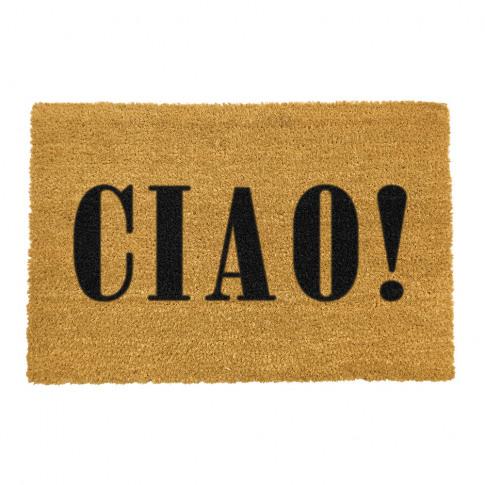 Artsy Doormats - Ciao Door Mat