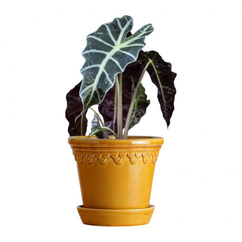 Bergs Potter - Copenhagen Glazed Plant Pot And Saucer - Amber - 21cm