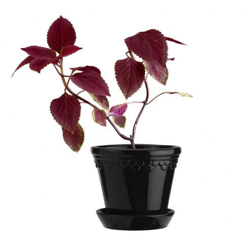 Bergs Potter - Copenhagen Glazed Plant Pot And Saucer - Black - 14cm