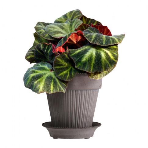 Bergs Potter - Simona Plant Pot And Saucer - Grey - ...