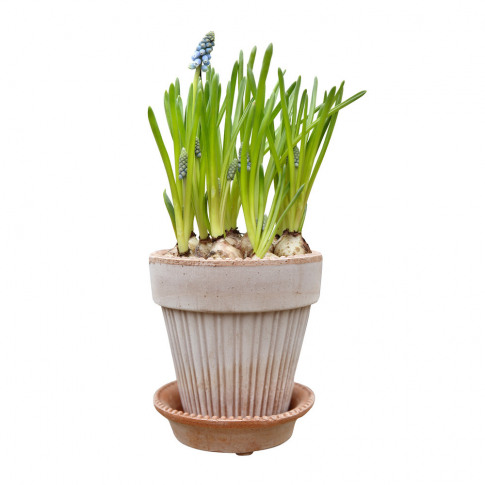 Bergs Potter - Simona Plant Pot And Saucer - Antique...